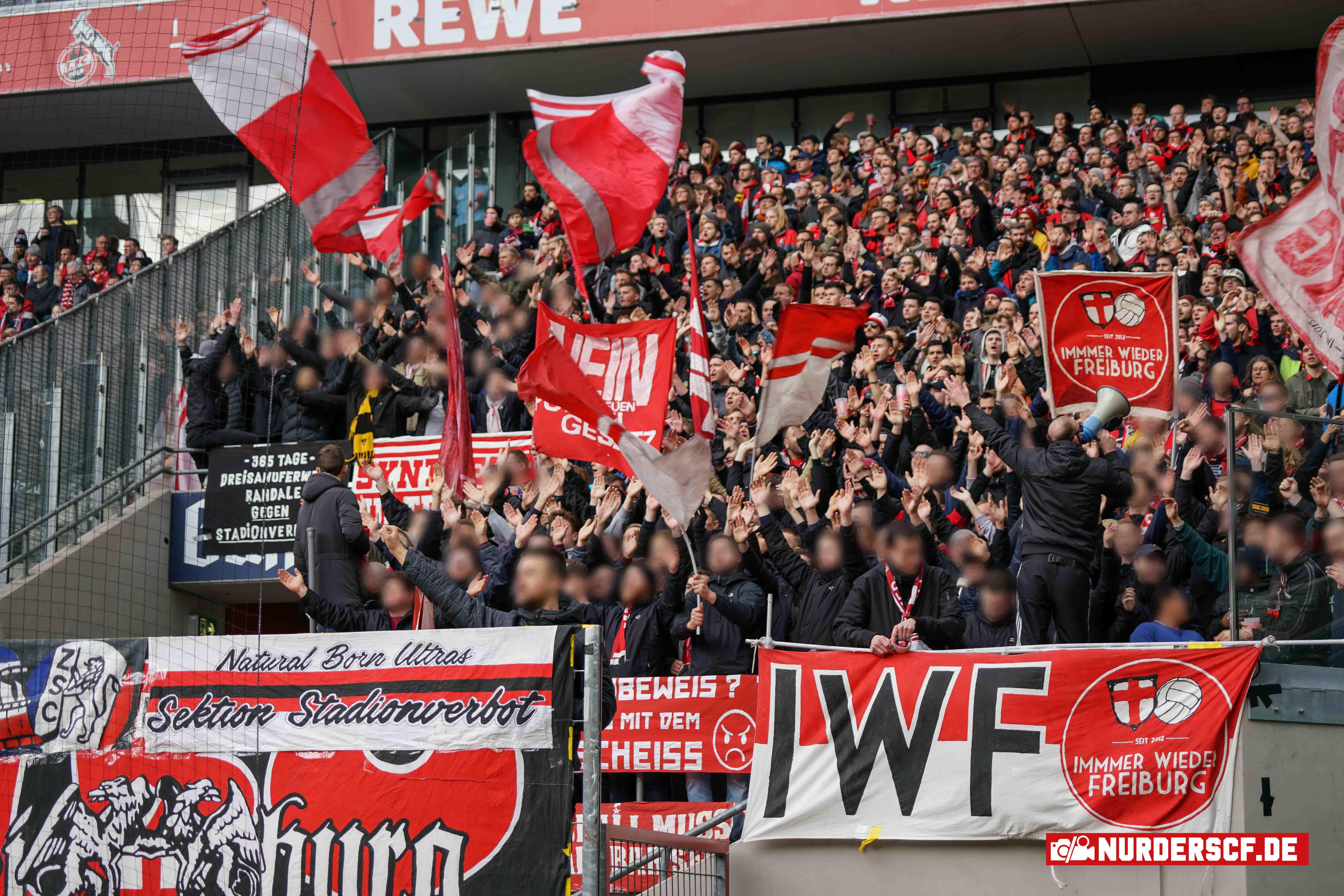 1. FC Köln – SC Freiburg 4:0, 02.02.2020 – 20. Spieltag Bundesliga